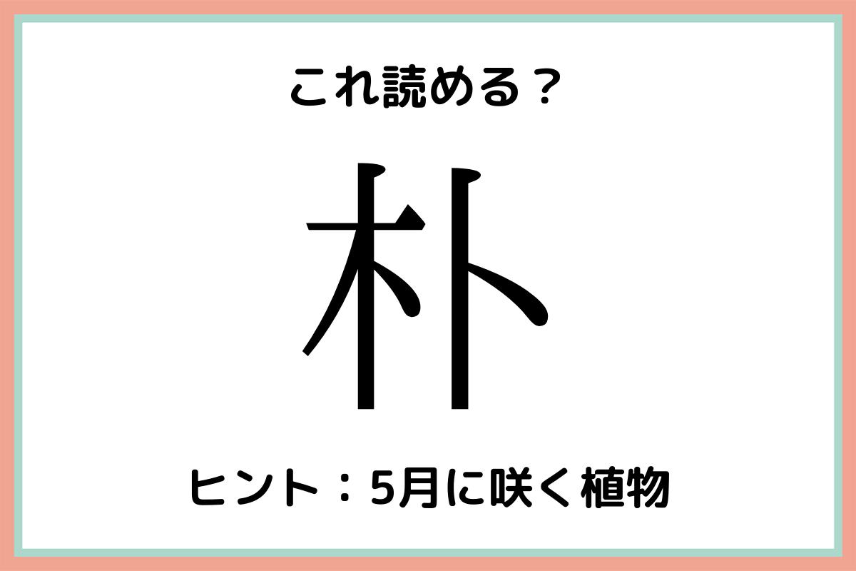 難しい漢字朴