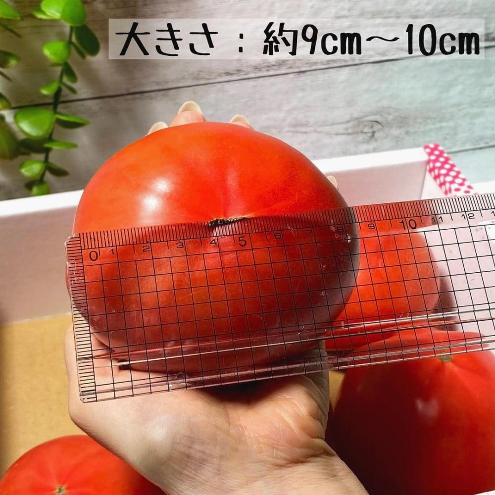 コストコの桃太郎トマト
