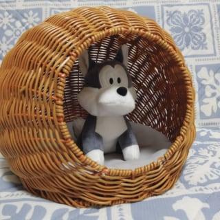 スリーコインズのラウンド籠ベッドの中にぬいぐるみを置いている写真