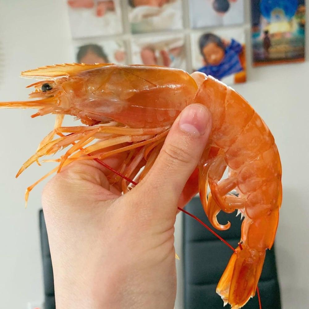 コストコの刺身用天然赤海老を手に持っている写真