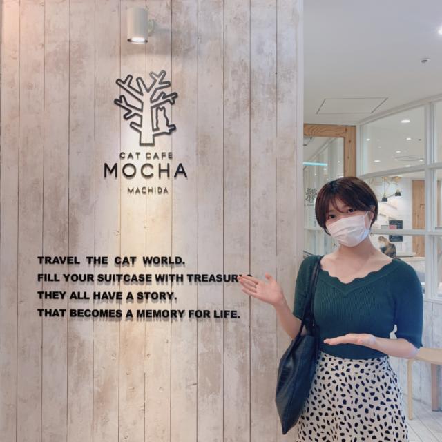 猫カフェMOCHA 町田ジョルナ店