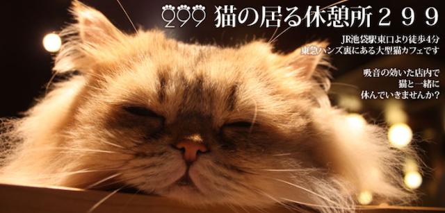 猫の居る休憩所299トップページ