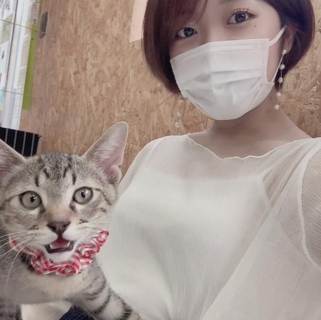 保護猫カフェMeooow!の猫と女性